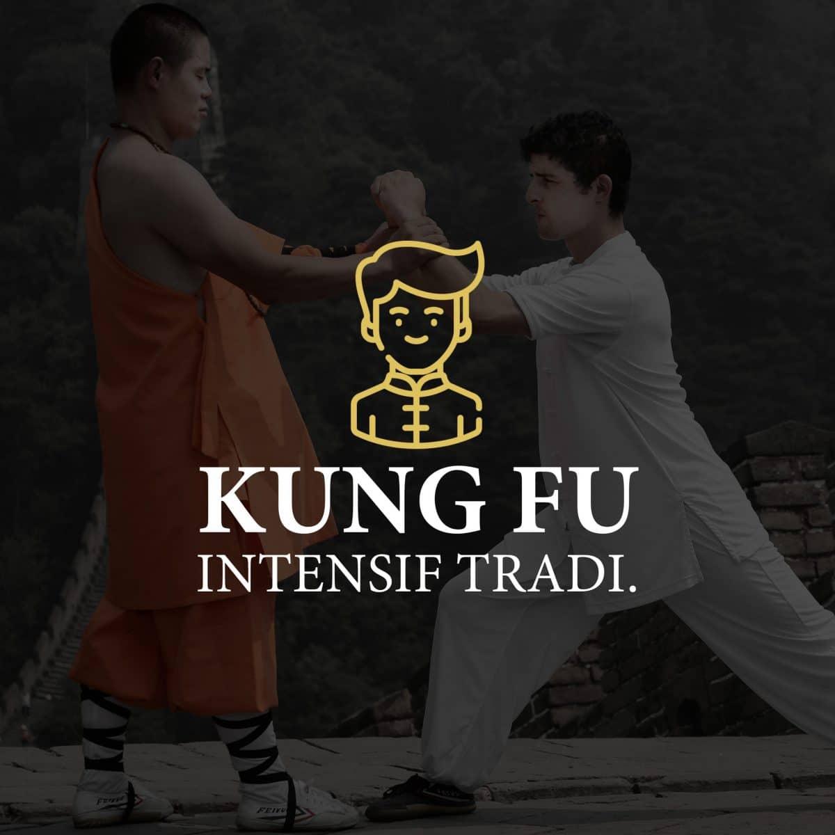 "Kung Fu Intensif ""traditionnel"" - Yim wing-chun"