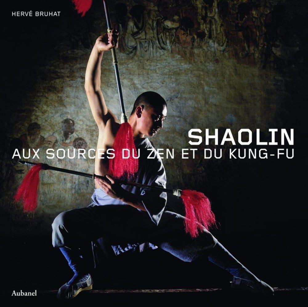 Shaolin : Aux sources du zen et du kung-fu - Inde: Les guerriers guérisseurs (kalaripayatt)
